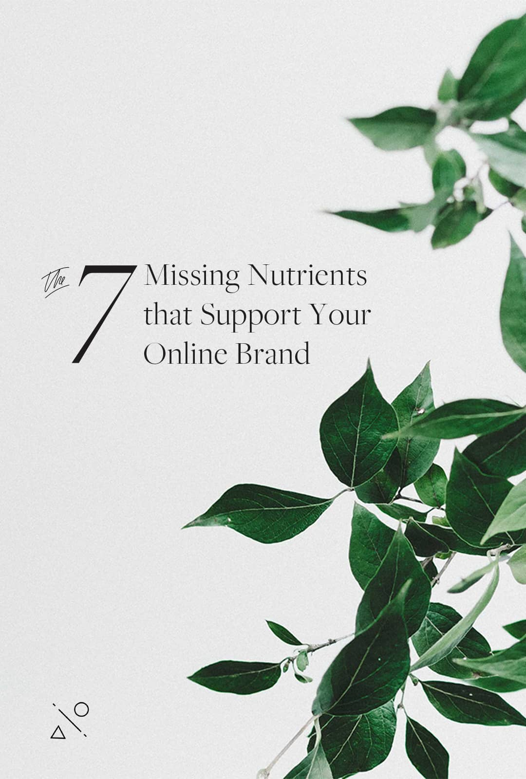 Class: The 7 Missing Nutrients that Support your Online Brand